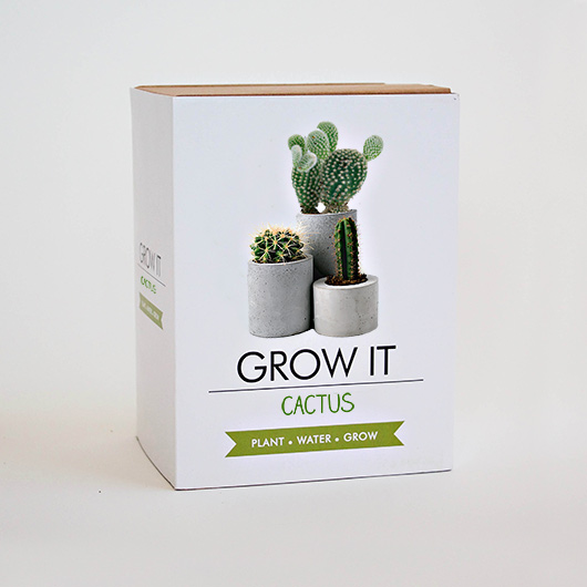 Grow It - Cactus