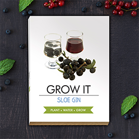 Grow It - Sloe Gin berries