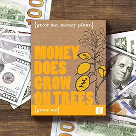 Grow Me: Money Does Grow On Trees