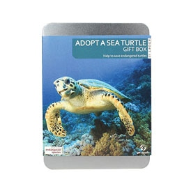Help protect sea turtles