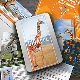 Help to protect giraffes