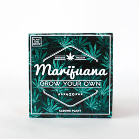 Grow Your Own - Marijuana