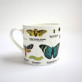 Insects Bone China Mug