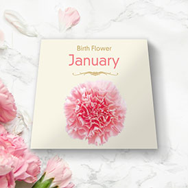 Birth Flowers - January