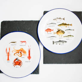 Set of 2 enamel plates
