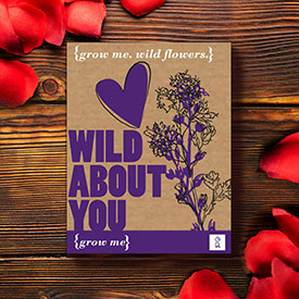 Grow me: Wild about you